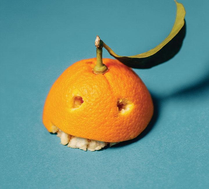 과일 먹기 전엔 읽지 마세요! 바나나, 아보카도, 오렌지의 진실.