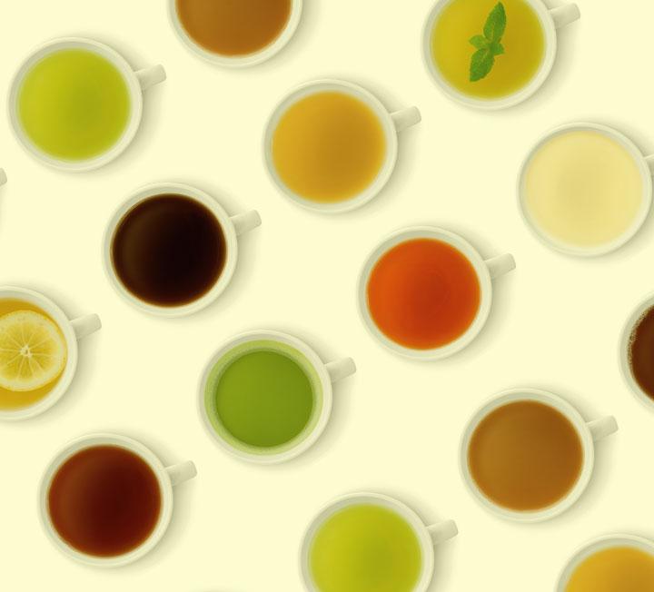 색과 향은 달라도 모두  '차나무'에서 나온다. ::헬스, 건강, 건강팁, 다이어트, 차, 녹차, 백차, 차종류, 차나무, 청차, 홍차, 흑차, 코스모폴리탄, COSMOPOLITAN