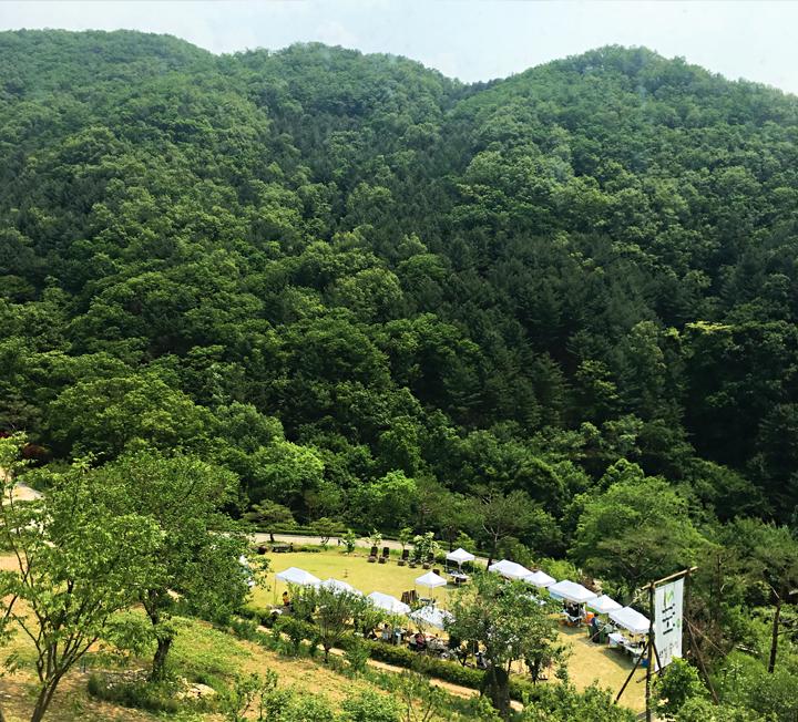 안에 있어도 덥고 밖에 있어도 덥다면 서울 시내와 근교에 있는 숲길로 가보자. 머리 위로 우거진 나뭇잎이 뜨거운 햇볕을 가려주고 청량한 공기는 가슴속까지 뻥 뚫어줄 테니까.
